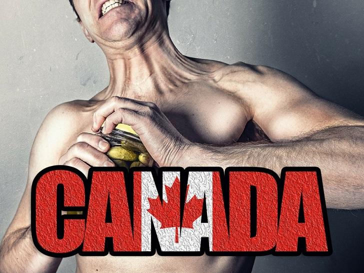 image of canada steroid review